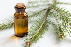 Τα μπουκάλια του ουσιαστικού πετρελαίου και του έλατου διακλαδίζονται για aromatherapy και τη SPA στο άσπρο επιτραπέζιο υπόβαθρο Στοκ Εικόνες