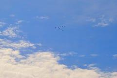Τα μπλε σύννεφα χρονικών σύννεφων κοπαδιών ατμόσφαιρας χήνων πτήσης ουρανού πετώντας καιρικά υπαίθρια υψηλά ηλιόλουστα αναπηδούν  στοκ εικόνες με δικαίωμα ελεύθερης χρήσης