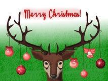 Τα νέα ελάφια ετών σας συγχαίρουν με Χαρούμενα Χριστούγεννα! Στοκ εικόνες με δικαίωμα ελεύθερης χρήσης