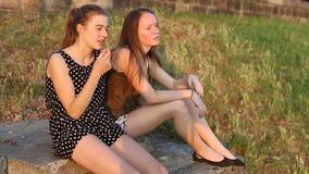Τα νέα κορίτσια μιλούν ο ένας στον άλλο να καθίσουν σε μια πλάκα πετρών στο πάρκο απόθεμα βίντεο