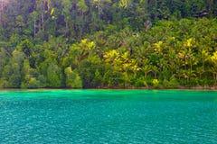 Τα νησιά Togian ταξιδεύουν τον προορισμό, τη φυσικές παραλία νησιών Togean και την ακτή με την πολύβλαστη πράσινη ζούγκλα στην τυ Στοκ Εικόνες