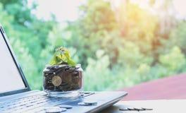 Τα νομίσματα υποβάλλουν τα νομίσματα γυαλιού και σωρών με το lap-top για την ανάπτυξη Στοκ Εικόνες