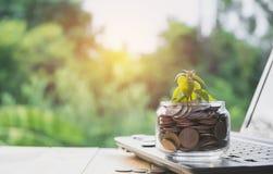 Τα νομίσματα υποβάλλουν τα νομίσματα γυαλιού και σωρών με το lap-top για την ανάπτυξη Στοκ Φωτογραφίες