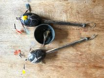 Τα ντέφια Shamanic και το κάψιμο Shamanic βγάζουν φύλλα Στοκ Εικόνες