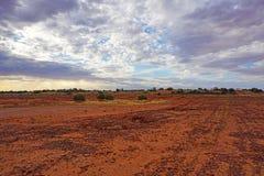 Τα ξηρά εδάφη, Roxy κατεβάζουν, Νότια Αυστραλία εσωτερικών Στοκ Εικόνες