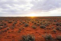 Τα ξηρά εδάφη, Roxy κατεβάζουν, Νότια Αυστραλία εσωτερικών Στοκ Φωτογραφίες