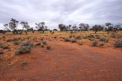 Τα ξηρά εδάφη, Roxy κατεβάζουν, Νότια Αυστραλία εσωτερικών Στοκ εικόνα με δικαίωμα ελεύθερης χρήσης