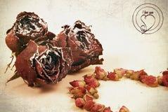 Τα ξηρά λουλούδια των τριαντάφυλλων είναι στο ύφος vintazhnom Στοκ Εικόνες