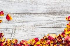 Τα ξηρά πέταλα αυξήθηκαν σε ένα άσπρο ξύλινο υπόβαθρο Στοκ Φωτογραφίες