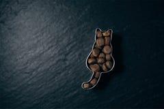 Τα ξηρά τρόφιμα σε μια γάτα διαμόρφωσαν τον κόπτη μπισκότων σε μια πλάκα - μαλακή τεχνική εστίασης Στοκ φωτογραφίες με δικαίωμα ελεύθερης χρήσης