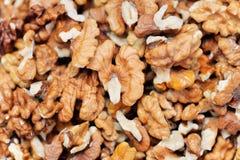 Τα ξύλα καρυδιάς είναι ένα καρύδι δέντρων που ανήκει στην οικογένεια ξύλων καρυδιάς Στοκ Εικόνες