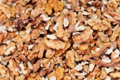 Τα ξύλα καρυδιάς είναι ένα καρύδι δέντρων που ανήκει στην οικογένεια ξύλων καρυδιάς Στοκ εικόνα με δικαίωμα ελεύθερης χρήσης