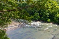 Τα ορμητικά σημεία ποταμού ενός ποταμού βουνών Στοκ εικόνα με δικαίωμα ελεύθερης χρήσης