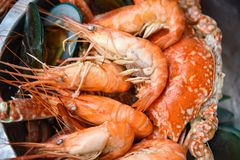 Τα οστρακόδερμα πιάτων θαλασσινών με το βράσιμο στον ατμό του μυδιού γαρίδων γαρίδων έβρασαν στο καυτό δοχείο με τα χορτάρια και  στοκ φωτογραφίες
