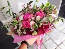 τα λουλούδια δίνουν το &m Στοκ Εικόνες