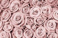 τα λουλούδια ανασκόπησ&et Στοκ Εικόνα