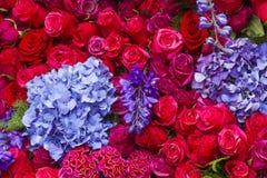 τα λουλούδια εμβλημάτων ανασκόπησης διαμορφώνουν λίγη ρόδινη σπείρα Στοκ Φωτογραφίες