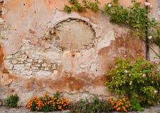 Τα λουλούδια διακοσμούν έναν τοίχο Στοκ Εικόνες