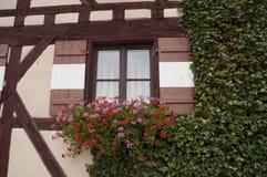 Τα λουλούδια διακοσμούν τα παράθυρα στο Castle Στοκ Εικόνα