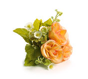 Τα λουλούδια κλείνουν επάνω για το υπόβαθρο Στοκ Φωτογραφίες