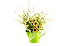 Τα λουλούδια στο πράσινο πότισμα μετάλλων μπορούν απομονωμένος Στοκ φωτογραφία με δικαίωμα ελεύθερης χρήσης