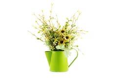 Τα λουλούδια στο πράσινο πότισμα μετάλλων μπορούν απομονωμένος Στοκ εικόνα με δικαίωμα ελεύθερης χρήσης