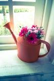 Τα λουλούδια στο πότισμα μπορούν στο παράθυρο Στοκ φωτογραφία με δικαίωμα ελεύθερης χρήσης