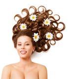 Τα λουλούδια τρίχας γυναικών, διαμορφώνουν σγουρό Hairstyle, άσπρες μαργαρίτες χρώματος Στοκ Φωτογραφίες