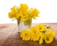 Τα λουλούδια Daffodil σε ένα λευκό μπορούν Στοκ Εικόνες