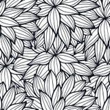 Τα λουλούδια Doodle περιγράφουν το διακοσμητικό άνευ ραφής σχέδιο Στοκ Φωτογραφία