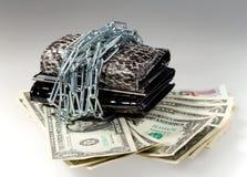 Τα δολάρια, η αλυσίδα και το πορτοφόλι χρημάτων στοκ φωτογραφία