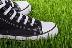 Τα πάνινα παπούτσια κλείνουν επάνω σε έναν πράσινο χορτοτάπητα Στοκ Φωτογραφίες