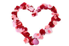 τα πέταλα αγάπης καρδιών α&upsil στοκ φωτογραφία