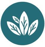 Τα πέταλα απομονώνουν το διανυσματικό εικονίδιο Editable Ελεύθερη απεικόνιση δικαιώματος