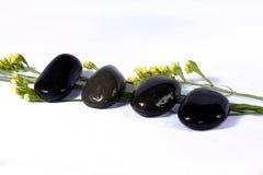 τα πέταλα χαλικιών αυξήθη&kappa Στοκ φωτογραφία με δικαίωμα ελεύθερης χρήσης