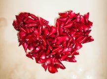 τα πέταλα αυξήθηκαν καρδιά Στοκ φωτογραφία με δικαίωμα ελεύθερης χρήσης