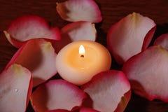 τα πέταλα κεριών αυξήθηκαν Εκλεκτική εστίαση στο κερί Στοκ φωτογραφίες με δικαίωμα ελεύθερης χρήσης