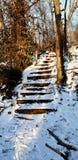 Τα παγωμένα σκαλοπάτια στοκ εικόνες με δικαίωμα ελεύθερης χρήσης