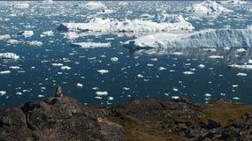 Τα παγόβουνα είναι στον αρκτικό ωκεανό στο ilulissat icefjord Στοκ Φωτογραφίες
