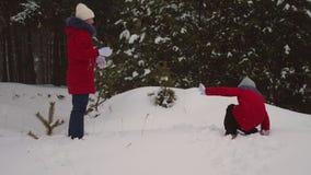 Τα παιδιά παίζουν τις χιονιές στο πάρκο χειμερινού χιονιού πεύκων μέσω snowdrifts και του γέλιου Τα κορίτσια παίζουν στο χιόνι το απόθεμα βίντεο