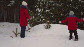 Τα παιδιά παίζουν τις χιονιές στο πάρκο χειμερινού χιονιού πεύκων μέσω snowdrifts και του γέλιου Τα κορίτσια παίζουν στο χιόνι το φιλμ μικρού μήκους