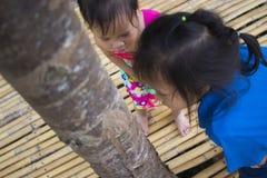 Τα παιδιά που προσπαθούν ταΐζοντας ένα κομμάτι των τροφίμων στο μυρμήγκι, το καλό παιδί της Ασίας που κρατά τρόφιμα και προσπαθού στοκ εικόνες με δικαίωμα ελεύθερης χρήσης