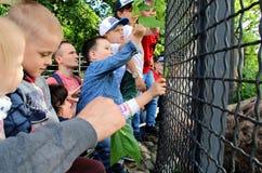 Τα παιδιά ταΐζουν τα ζώα Στοκ φωτογραφία με δικαίωμα ελεύθερης χρήσης