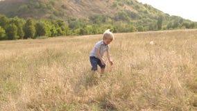 Τα παιδικά παιχνίδια στον τομέα και μαδούν την ξηρά χλόη φιλμ μικρού μήκους