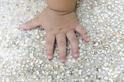 Τα παιδιά δίνουν στο αμμοχάλικο Στοκ Εικόνα