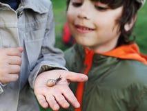 Τα παιδιά μαθαίνουν το σαλιγκάρι στοκ φωτογραφία