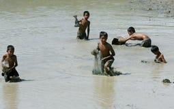 Τα παιδιά πιάνουν τα ψάρια στον τομέα ορυζώνα Στοκ Φωτογραφία