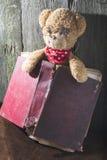 Τα παιδιά teddy αντέχουν με το βιβλίο Στοκ Φωτογραφίες