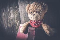 Τα παιδιά teddy αντέχουν με το βιβλίο Στοκ Εικόνες