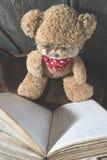 Τα παιδιά teddy αντέχουν με το βιβλίο Στοκ φωτογραφίες με δικαίωμα ελεύθερης χρήσης